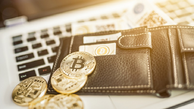 Everything You Need to Know About a Crypto Wallet
